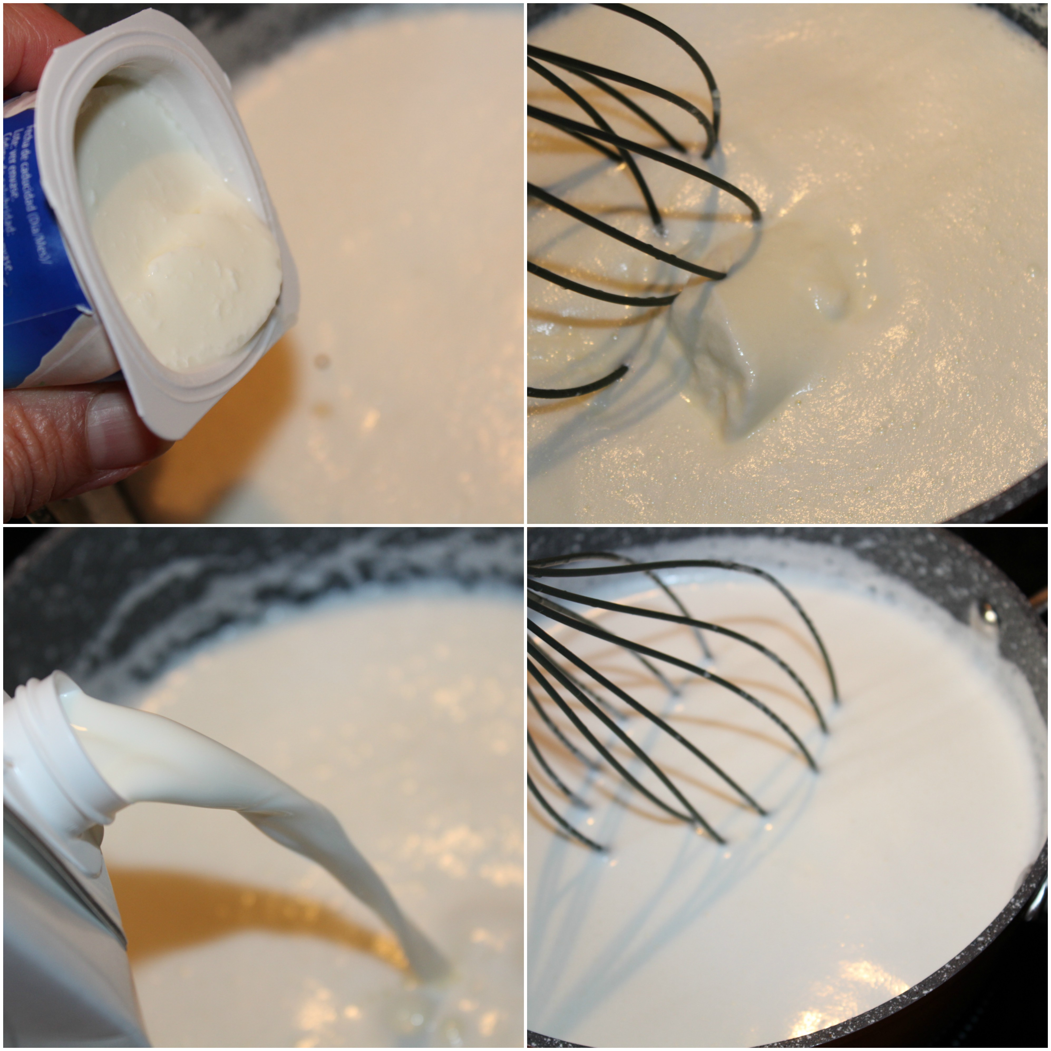 yogur natural 2