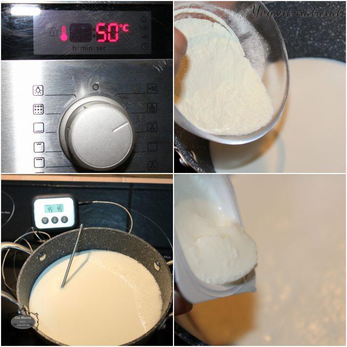 Yogur natural 4